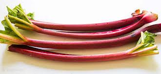 rhubarb prepared