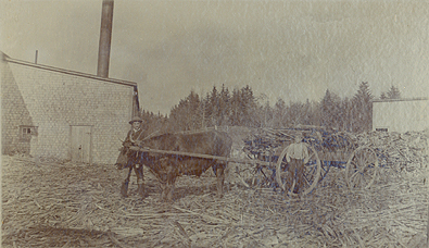 Lumber wagon c. 1880